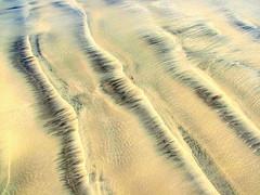 Sand (RyanThomas) Tags: 2005 texture beach blacksand sand patterns july streaks milnerton ambiguous ryanthomas
