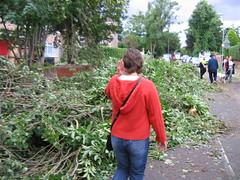 Tornado 049 (Mangrenade) Tags: tornado birmingham moseley sparkbrook july 2005 wind damage