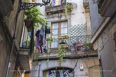 Ciutat Vella (5) (Carme MV Photography) Tags: barcelona ciutatvella fotodng dzoom
