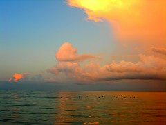 Sun up - spirits up! - beach sunrise good kendouglas today ken picturethis douglas sanibel top_tiagd toptiagd sun