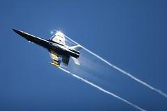 Blue Angel, Seattle (Piero Sierra) Tags: seafair blueangels jet airplane