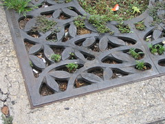 Decorative tree grate