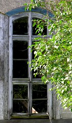 The castle of Bedheim (:Linda:) Tags: blue summer reflection tree castle window germany outside thringen wooden ast stair paint village decay fenster spiderweb july thuringia treppe cobweb step staircase twig inside spinne peelingpaint schloss reflexion spinnwebe banisters zweig bedheim treppenstufe reflectiononwindowpane