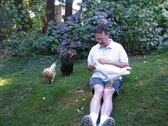 Dad with a chicken in his lap