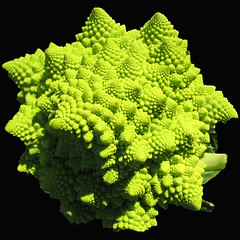 romanesco (docman) Tags: vegetable green romanesco mysterious square docman fractal fibonacci interestingness1