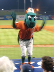 Meet the Greensboro Grasshopper!