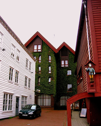buildings with ivy, Bryggen
