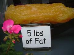 Five Pounds of Fat! (dogwelder) Tags: 2005 sanfrancisco california flower fat august zurbulon6 foundinsf sanchez 26th liteforlife zurbulon gatturphy gwsf5party mostviewsingwsf