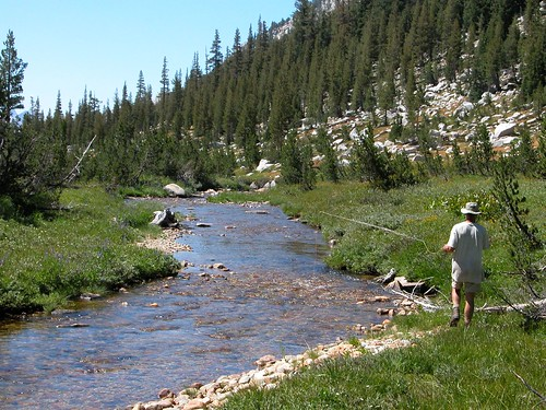 Photo: Fly fishing on Spiller Creek by Jesse Wagstaff