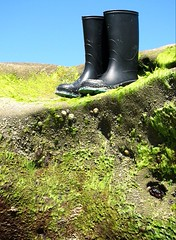 Right will take you places, yah maybe to the beach (pinkbelt) Tags: wellies boots beach lajollacove california pacific ocean water tide rubber wet splash sun waterproof pinkbeltrage summer green rock sand blue