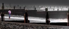 groynes (mark lorch) Tags: 2005 uk pink sea beach girl topv111 1025fav yorkshire august east groyne groynes withernsea tccomp025 tccomp199