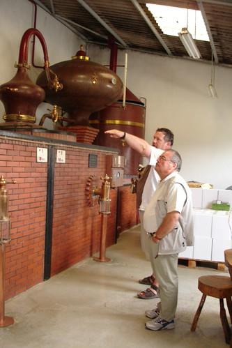 Examining the Cognac Instillation