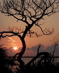 Dawn over Indian River (hodad66) Tags: sunrise 82005 florida indianriver ilovenature wow topf25