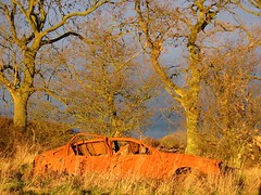 Joyride (ambo333) Tags: road sunset stilllife storm tree abandoned grass car rust beds bedfordshire grassland dunstable astra digest vauxhall carmageddon joyride abandonedcar caddington vauxhallastra lu1 dunstableroad sunsetjoyride vauxhallabandoned caddingtonvillage