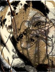 Auto-retrato (mgbon - graa neves) Tags: life men nature women body interior secret invitation colourful ilustration draws hapiness fuga medo neves pensamento neutro mgbon gra kidsadultsdayli