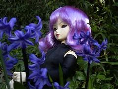 Tessa. (Athanassia) Tags: doll pop bjd resin superdollfie volks abjd hyacinthus poppen f04 optionalhead