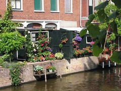 Appingedam NL (♥ Annieta ) Tags: pink flowers blue red summer holiday flower green nature water fleur tag3 taggedout fleurs canon river ilovenature interestingness tag2 colore tag1 purple couleurs blumen scout explore van groningen fiori blüte cosy flowerpower bloemen allrightsreserved blum bloem powershotg2 canonpowershotg2 i500 annieta explore10mar06 theworldthroughmyeyes 1on1flowers thebiggestgroup kakadoo multicoloredobject masterphotos flowerpicturesnolimits flowercrazy bochoven vanbochoven usingthisphotowithoutpermissionisillegal