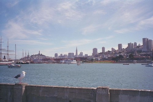 San Francisco Scenery