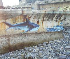Zade (COLOR IMPOSIBLE CREW) Tags: playa bomb 2007 viadelmar zade fros