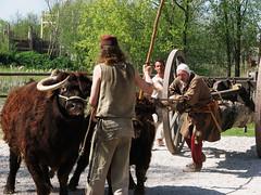 Medieval heavy transport (7/7)