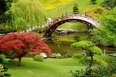Magic Garden (Randy Son Of Robert) Tags: california bridge green garden japanese maple pond sanmarino peaceful explore willow h