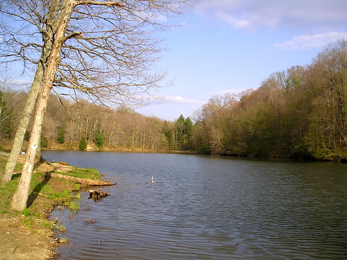 Bryant Creek Lake