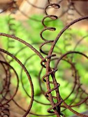 La espiral (.Bambo.) Tags: muelle espiral texturas valla huerta hierro poesía óxido blueribbonwinner colchón palabrassueltas