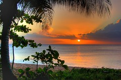 Coucher de soleil  Grande Anse (Bidule_07) Tags: ocean sea sky orange sun mer tree beach sunshine yellow jaune de island soleil coucher sable ile palm ciel sands plage palmier guadeloupe antilles ocan hrd hdrenfrancais