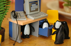 when the boss is away the penguins will play... - by bookgrl