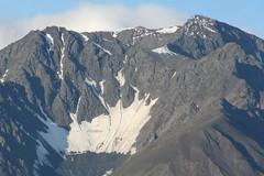 IMG_0126 (marco.giazzi) Tags: canada alaska columbia yukon anchorage british denali valdez freddo fjords barrow klondike orsi oceano artico ghiacciai