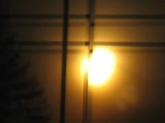 Close up of golden sunrise reflection (peggyhr) Tags: orange tree yellow sunrise gold edmonton rooflines