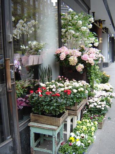 Kukkakauppa Bulevardilla by Anna Amnell