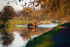 Sur le Canal (jeanmichelchuiche) Tags: hiver canaldumidi vias channelofthesouth chemindehalage towingpath