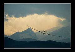 Campionati di Volo a vela