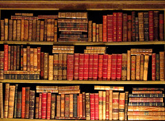 knygos lentyna