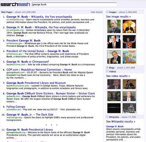 Google's Search Mash
