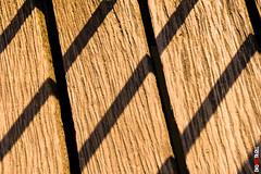 _-32 (BigRedTroll) Tags: architecture bridge closeup pattern shadow structure