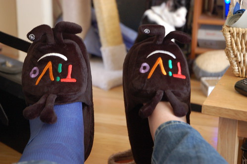 The Goofy slippers!
