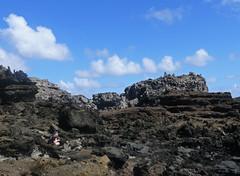 Camouflage (StubbyFingers) Tags: hawaii rocks ryan maui camouflage nakalele nakaleleblowhole
