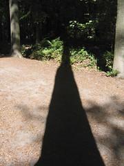 shadow (irriske) Tags: trees bomen woods belgium belgique belgi arbres canonpowershota95 bos fort buggenhout irriske vaanderen