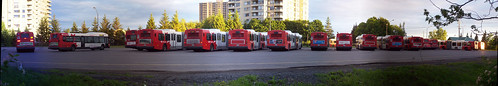 A panorama of OC Transpo buses...