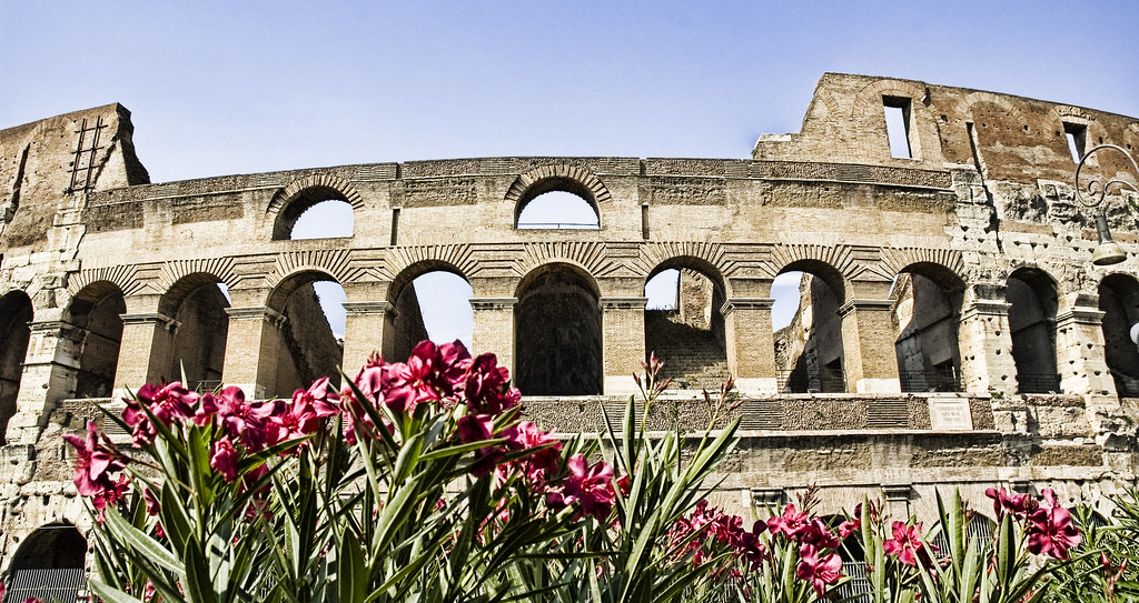 Colosseo in Afternoon