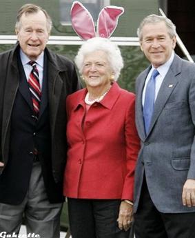 Easter Bushes