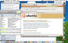 Xnest connect to Ubuntu 7.04 in Mac OS 3 - by Yes, i