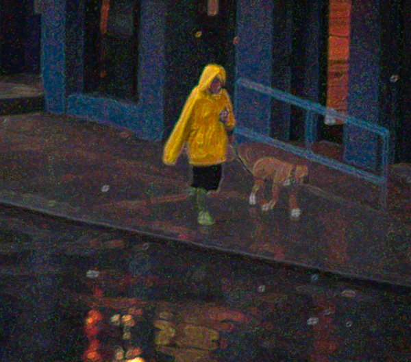 Dog Walking in the Rain