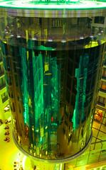 Aquadom-Cocktail (honma) Tags: berlin aquarium domaquaree aquadom falschfarben