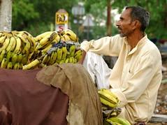 Bananas (Gui Benvenutto) Tags: india market delhi bananas