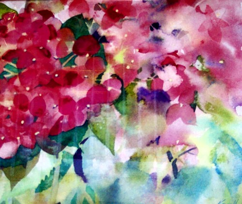 pink hydrangea watercolor
