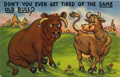 Postcard:  Same Old Bull