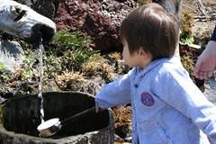 Oshino-Hakkai : spring water